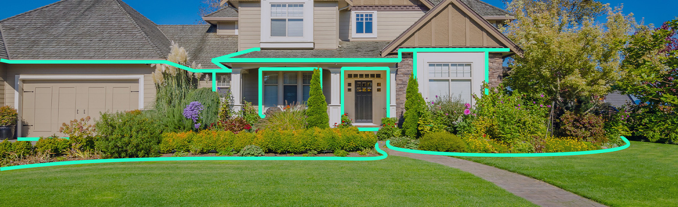 Introducing Perimeter Pest Image