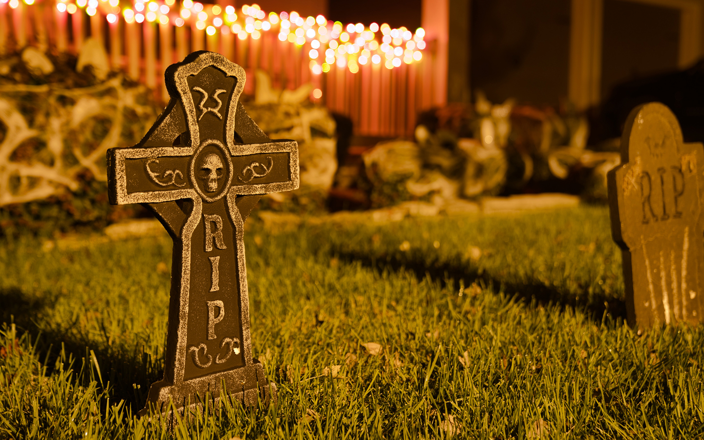 5 Spooky Facts about Your Lawn Image