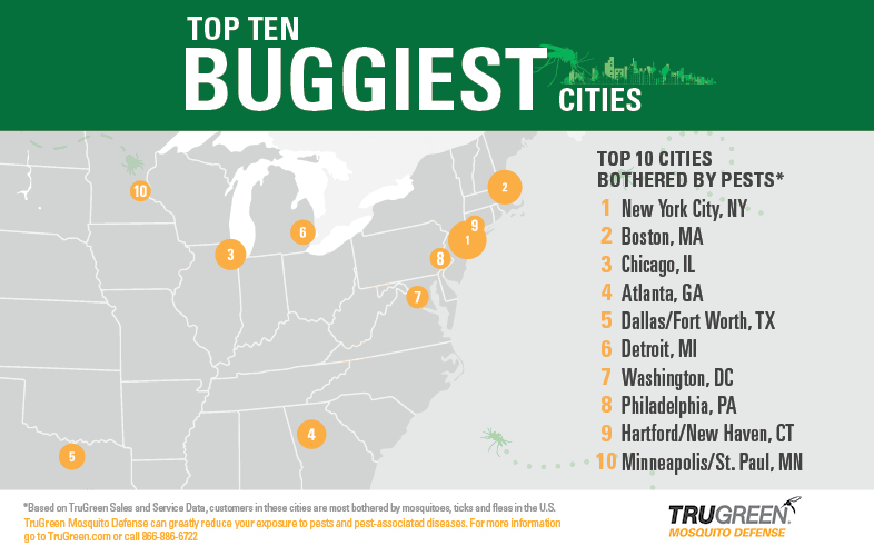 Buggiest City Map