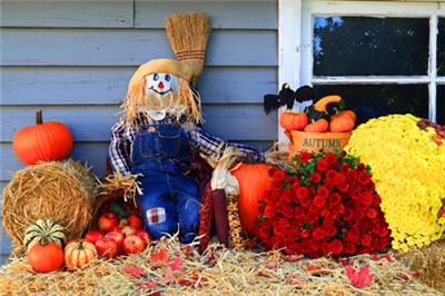 <p>fall patio decorations</p>