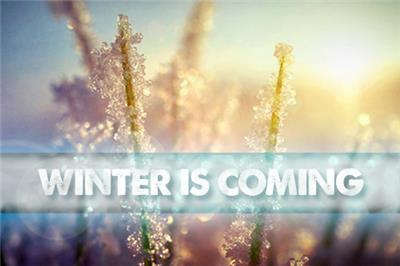 <p>Tips to prepare your lawn for winter</p>