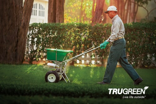 <p>TruGreen lawn specialist using a seed spreading machine on a lawn</p>
