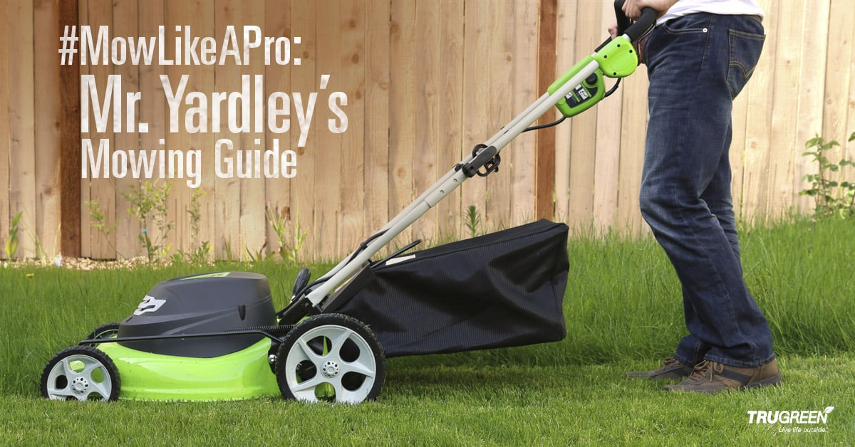 <p>grass height mowing guide</p>