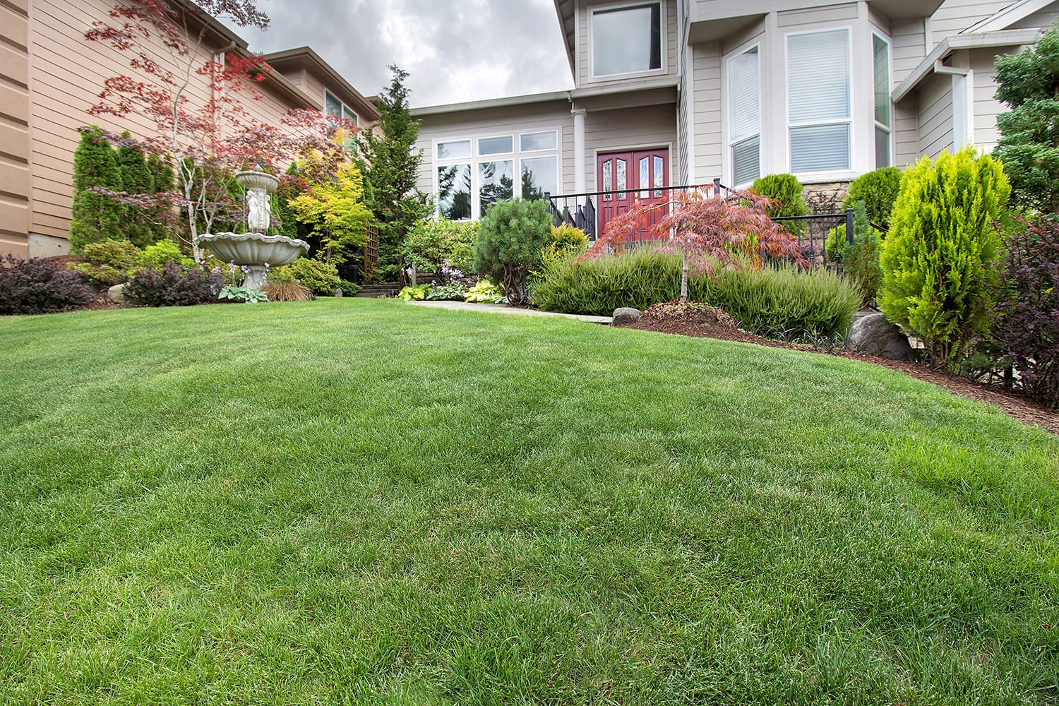 <p>Manicured front yard</p>