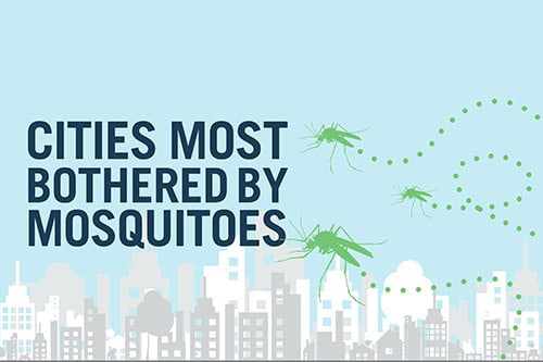 <p>Report: Cities Most Bothered by Mosquitos</p>